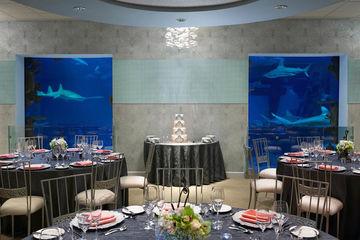 5 favorites waterside wedding venues in las vegas little vegas lotus court at westin lake las vegas junglespirit Gallery