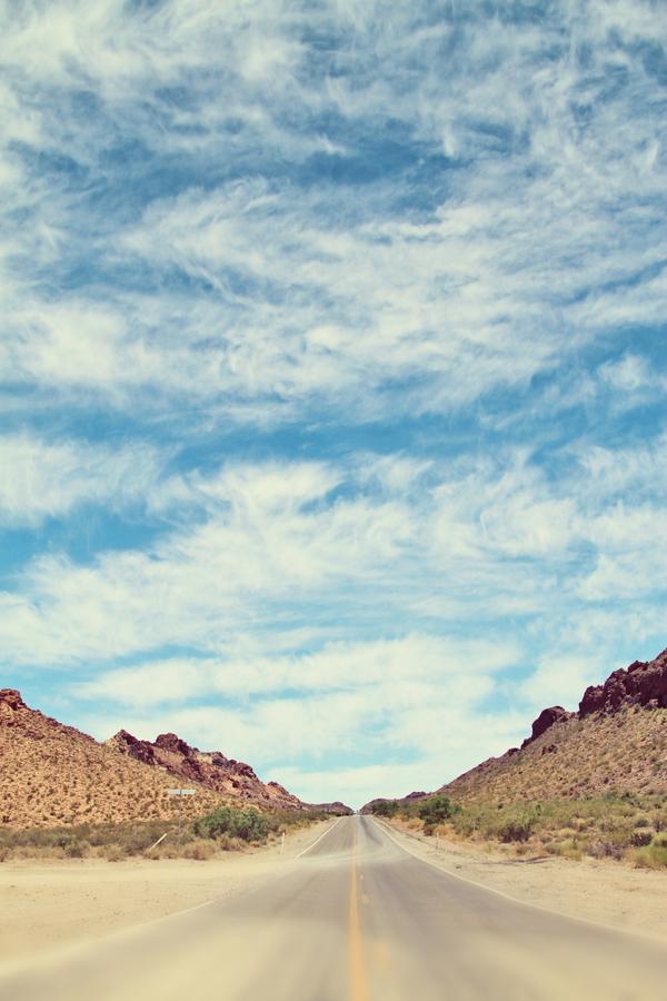 desert-engagement001