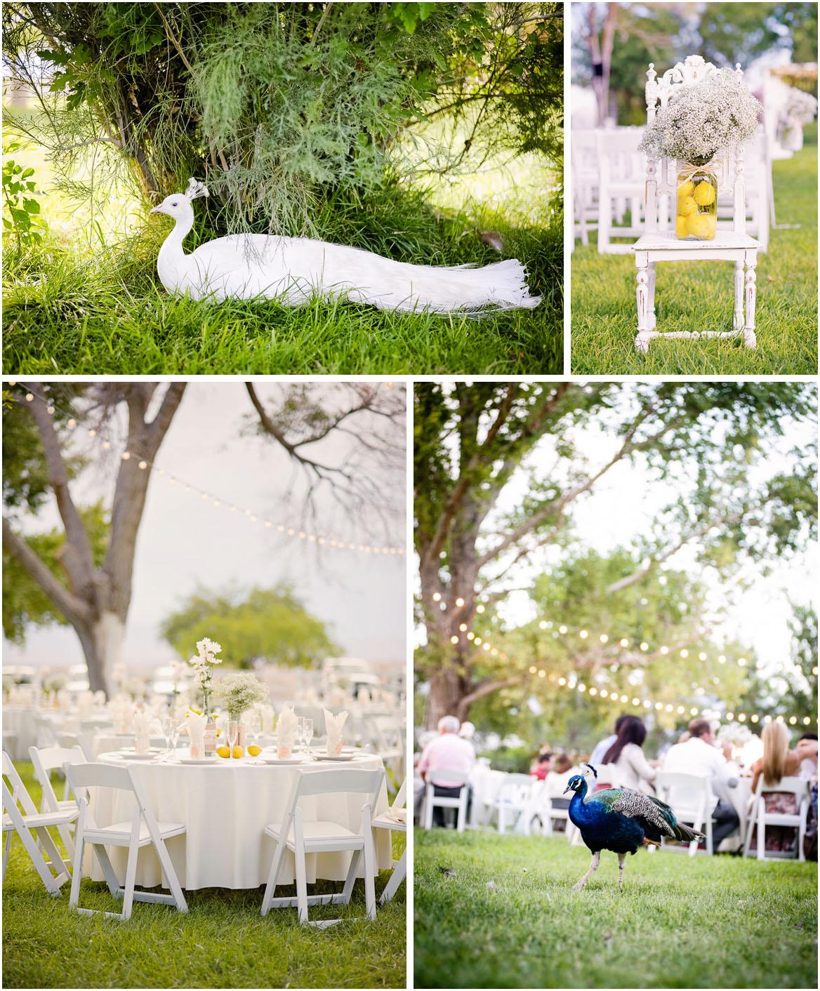 See More Rustic Weddings